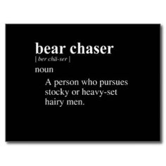 BEAR CHASER DEFINITION.
