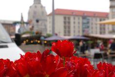 Dresden Altmarkt  Dresden Old Market Place