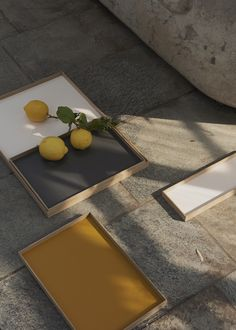 FRAME tray - The perfect tray for all your exhibitions from MUNK collective Fine Arts School, Frame Tray, Scandi Chic, Warm Grey, Stores, Scandinavian Design, Hardwood, Plates, Pure Products