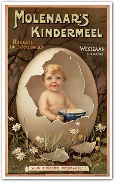 Reclame posters   1900-1925   Molenaar's Kindermeel. Zijn eerste wensch   Vintageposter.nl   Vintage Posters   Historische Posters   Historical Posters