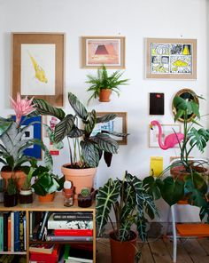 Maria and Filip have decorated the home stuffed with plants. Feng Shui, Denmark, Beautiful Homes, Planters, Gallery Wall, Frame, Instagram, Home Decor, Interiors