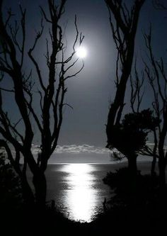 By the light of the Silver moon- gorgeous.