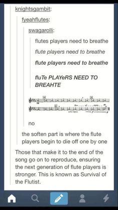 I played the flute. used to – funny memes My Tumblr, Tumblr Funny, Funny Memes, Hilarious, Memes Humor, Johnny Cash, Flute Memes, Memes Spongebob, I Love Music