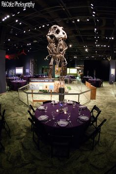 DinoDigs event wedding reception at the Orlando Science Center