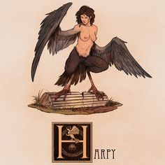 Name: Harpy Area of Origin: Rome, Greece The Harpies are Greek and Roman mythological creatures with the bodies of birds and the heads and torsos of women. They'd often steal food from their victims and would carry evil-doers to the Erinyes (also. Mythological Creatures, Fantasy Creatures, Mythical Creatures, Creature Drawings, Animal Drawings, Terra Nova, Roman Mythology, Creature Feature, Fantastic Beasts