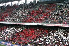 Stark! Unsere Fans. Fc Red Bull Salzburg, Fans, Life, Followers