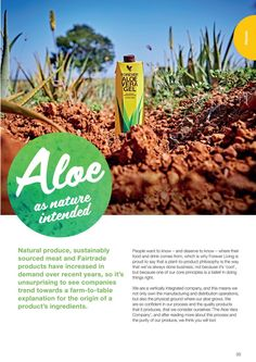 Forever Aloe Vera is grown at our plantations in the Dominican Republic and Texas. Forever Aloe is carefully grown and cultivated, ensuring the highest quality plant possible. Aloe is often referred to as nature's best gift due to the proven health benefits derived from the gel found inside the leaf of the plant. Growing Aloe with care in the best possible climate and conditions guarantees that you receive the best products available. From plant to product to you!