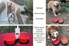 Northern Outback SuperSized Travel Pet Bowl Carrier Kit has TWO 5 CUP Silicone bowls, a BONUS 2 CUP Water Bottle and TWO Carabiner Clips! Excellent for all sizes of Dogs or Pets or hey, if you are a Camper or Hiker, this is for you! Liu Jo, Big Dogs, Small Dogs, Pool Skimmer, Dog Feeder, Pet Travel, Pet Bowls, Medium Dogs, Camping Accessories