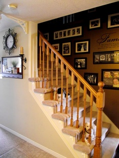 staircase picture wall (photo frames on wall desks) Picture Wall Staircase, Staircase Pictures, Home Upgrades, Frames On Wall, Decoration, Home Decor Inspiration, My Dream Home, Beautiful Homes, Sweet Home