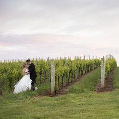 Elegant Winery Wedding in Virginia