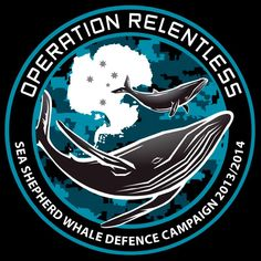 Sea Shepherd Operation Relentless - the 10th Antarctic whale defence campaign.