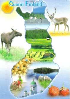 Potatoes, moose, reindeer, forests and lakes, that is Finland. Lofoten, Helsinki, Finland Culture, Finland Map, Finnish Words, Native Country, Thinking Day, Best Cities, Europe