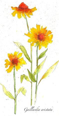 Art du Jour by Martha Lever: Yellow Color Drop