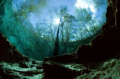 peering out from inside the Main Spring Ginnie Springs.. High Springs FL