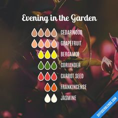 Evening in the Garden — Essential Oil Diffuser Blend