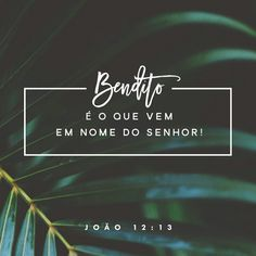João 12:13