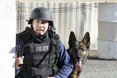 K9 Jax NYPD