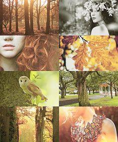 nymphs of greek mythology | Dryad (tree nymph, female spirit of a tree)