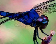 Royally Blue Dragonfly Digital Paintings Fine by SensingMajesty, $51.20