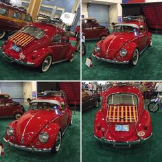 "6 Likes, 1 Comments - The Irish Duke™ (@theirishduke) on Instagram: ""Buggin #vw #vwbug #classiccar #vwbeetle #bajabug"""