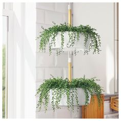 34 New ideas bathroom plants ikea hanging planters Hanging Plants Outdoor, Indoor Plant Pots, Hanging Planters, Potted Plants, Indoor Outdoor, Tomato Plants, Air Plants, Porch Plants, Ikea Plants