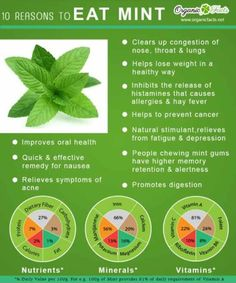 Health benefits if mint leaf