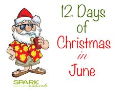 """We have kicked off the Spark Naturals """"12 Days before Christmas in June"""". Each day we will be featuring a top Spark Naturals Product."""