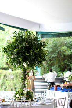 Looking for a tall arrangement?... #wedding #tallarrangement #flowers #centerpiece #green #natural #tree foto de: @Debora Fossas