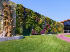 44,000 plants growing on the walls of a shopping centre in Rozanno, winning the Guinness Book of Records for the world's biggest vertical garden