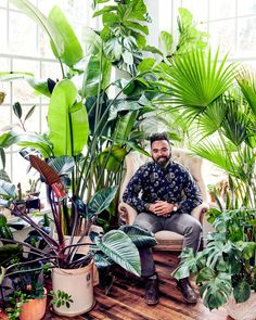 How to Decorate Your Home With Plants. Artist turned plant whisperer and author Hilton Carter transformed this historic Baltimore loft into a lush oasis. Big Indoor Plants, Real Plants, Indoor Garden, House Plants Decor, Plant Decor, Macho Fern, Decoration Plante, Tropical, Room To Grow