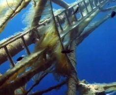 Costa Concordia: la nave vista dal fondale marino