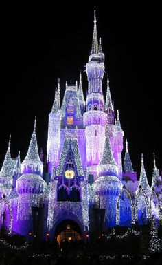 a beautiful picture of Cinderella's Castle