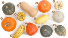 Although much is said about summer's hottest produce ticket, the tomato, and its many multicolored heirloom varieties, rarely do varieties of winter's biggest vegetable, squash, get the same kind of attention. Thankfully, someone's stepped up to the plate and created a handy, extensive visual guide to the many different varieties of winter squash.