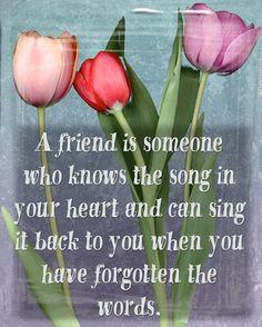 A friend is . . .