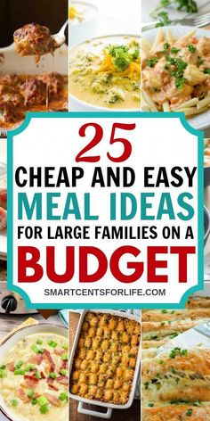 Check out these cheap and to feed large families on a tight budget! Delicious you can try this month. Chicken, beef and vegetarian and vegan meal ideas that won't break your budget! Cheap and easy dinner ideas or lunch recipes for a meal ideas vegetarian Cheap Easy Meals, Cheap Dinners, Frugal Meals, Inexpensive Meals, Freezer Meals, Cheap Meals For Two, Cheap Food, Cheap Crock Pot Meals, Cheap Dinner Ideas