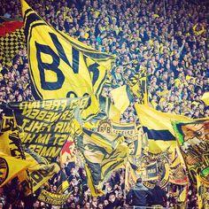 South Stand 💛 – Harryha – Join in the world of pin Hamburger Sv, Ultras Football, Bvb Fan, Signal Iduna, Football Tops, Messi, Black N Yellow, Liverpool, Soccer