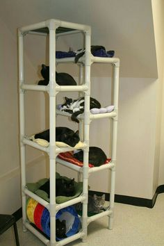 pvc pipe cat napping tower