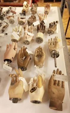 www.EclecticPelican.ca  https://twitter.com/EclecticPelican  pinterest.com/eclecticpelican  instagram.com/antiques Medical History, Medical Art, Medical Drawings, Science Museum, Show Of Hands, Museum Displays, Cabinet Of Curiosities, Hand Art, Weird Art