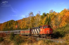 HDR Autumn Train by *Nebey on deviantART