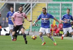 Palermo vs Sampdoria Full Time Video Highlights - Serie A TIM - February 26, 2017. Watch Extended Video Highlights of Italian Serie A TIM match : Pale...