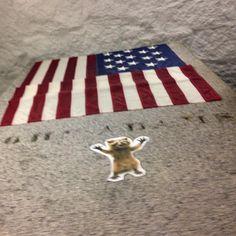 #wheresrory Knock knock Founding Father.