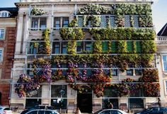 #ClippedOnIssuu from Vertical Gardens