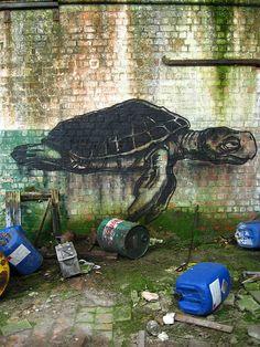 incredible street art by roa http://www.flickr.com/photos/roagraffiti/