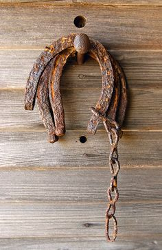 ♥ Shoes fallen long ago from nails large enough to bear weight. Remembering Newfoundland ponies once shoed in Old Forge Garden, Bauline East, NL.
