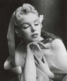 Marilyn Monroe sexxxy