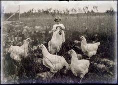 Antique Edwardian photo, little boy with chickens, photographer Hugh Mangum. Vintage Photographs, Vintage Photos, Antique Photos, Old Pictures, Old Photos, Penny Picture, Chicken Illustration, Jim Crow, Portrait Photographers