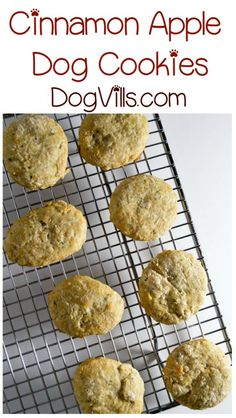 We have another delicious hypoallergenic dog treat recipe for you today for your pooch with allergies! Fido is going to love our cinnamon apple dog cookies! They smell SO good when they're baking, you might be tempted to take a bite yourself Homemade Dog Treats, Pet Treats, Healthy Dog Treats, Dog Biscuit Recipes, Dog Treat Recipes, Dog Food Recipes, Hypoallergenic Dog Treats, Dog Cookies, Apple Cookies