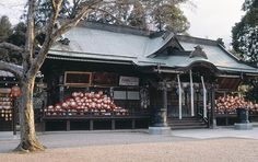 小林山達磨寺 shorinzan darumaji
