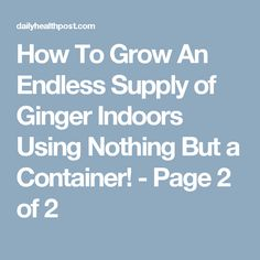 How To Grow An Endless Supply of Ginger Indoors Using Nothing But a Container! - Page 2 of 2