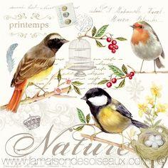Paper Napkins for Decoupage Decopatch Vintage Les Oiseaux Decoupage Vintage, Paper Napkins For Decoupage, Decoupage Art, Vintage Paper, Vintage Birds, Vintage Images, Paper Birds, Bird Design, Illustrations